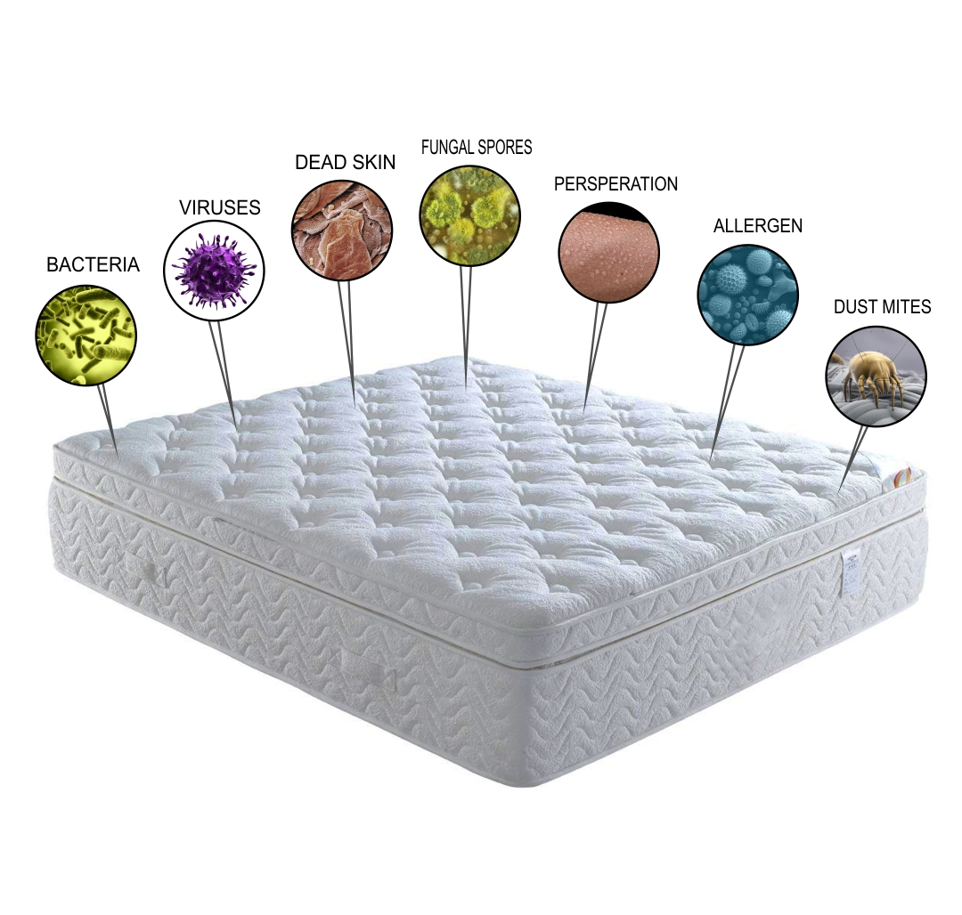 dust mites in mattress how to clean